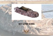 Best Layout Blinds