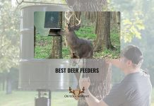 Best Deer Feeders