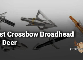 Best Crossbow Broadhead for Deer