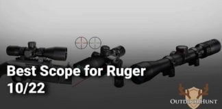 Best Scope for Ruger 10/22