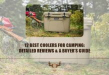 best-coolers-for-camping