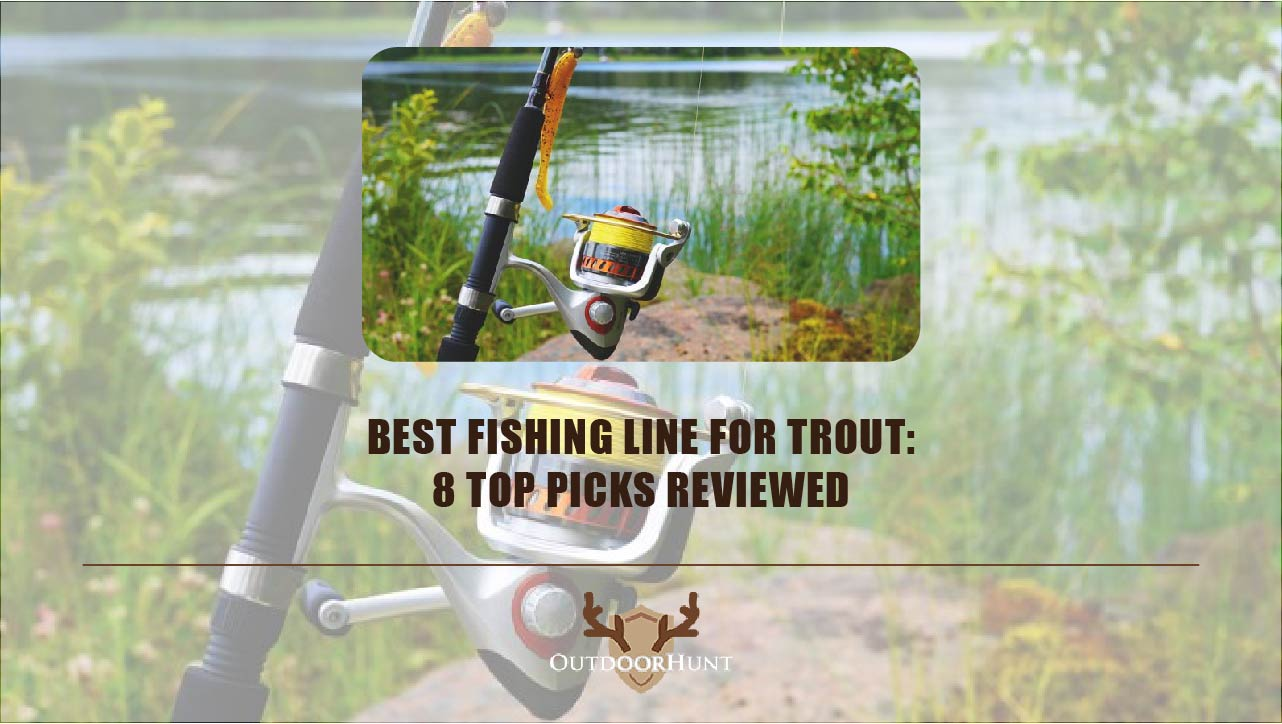 best-fishing-line-for-trout