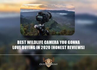 best-wildlife-camera